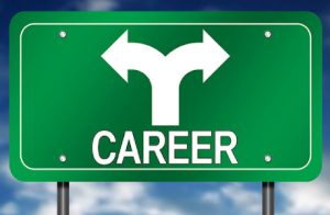 A Sign Board Representing The Directions Of Career Option.